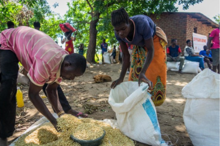 IOM launching Japan-funded emergency response project for IDPs in Niger