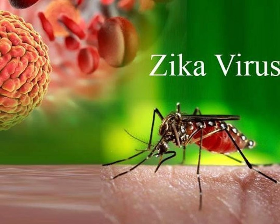 Mutations linked to fetal microcephaly not present in Zika virus strain: Health Ministry