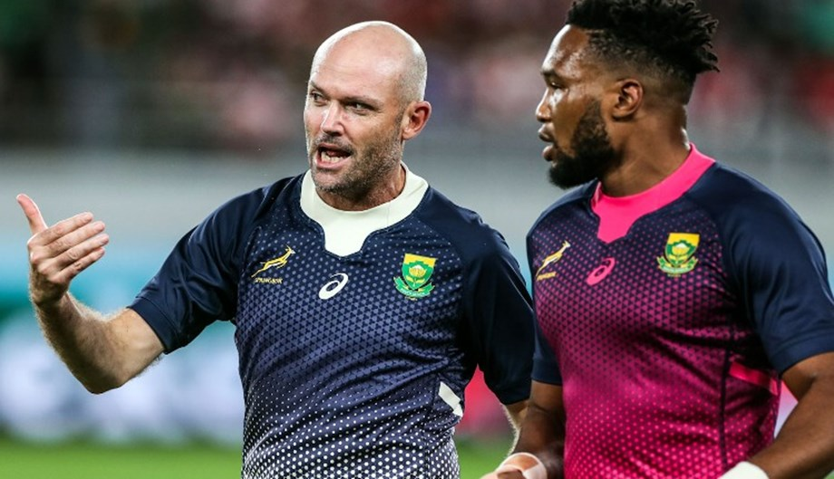 Jacques Nienaber to report directly to SA's director as new Springbok coach
