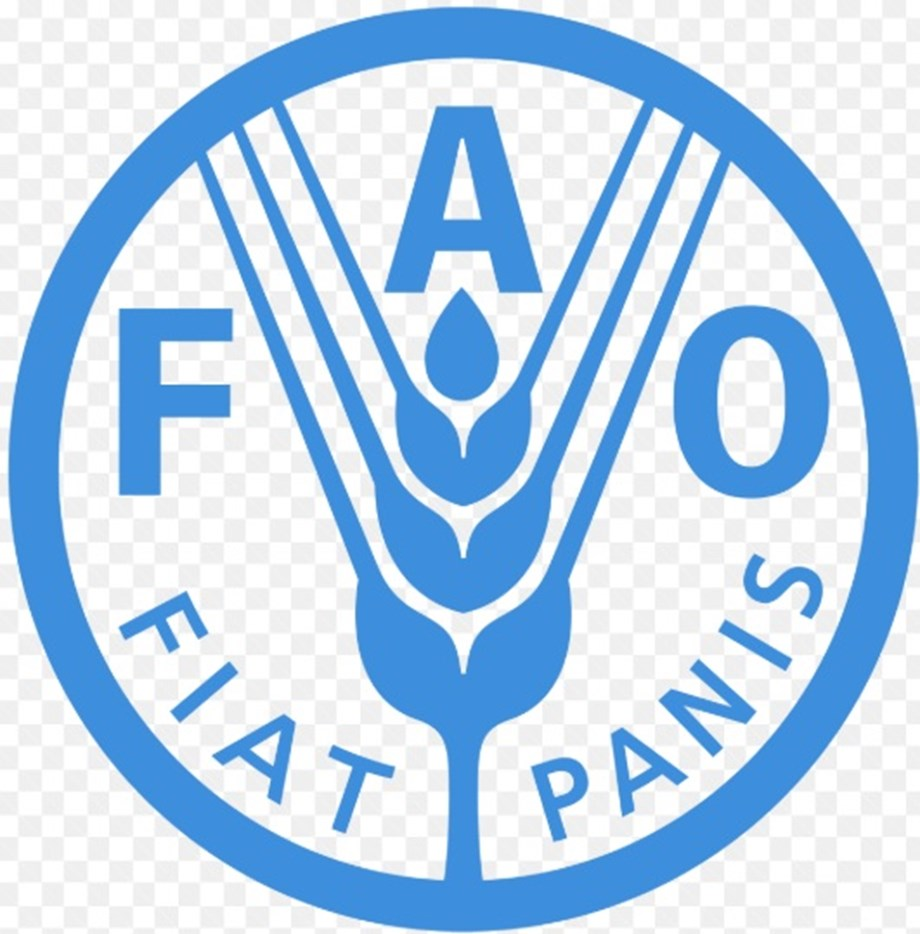 FAO holds a workshop to support integrated development of rural communities