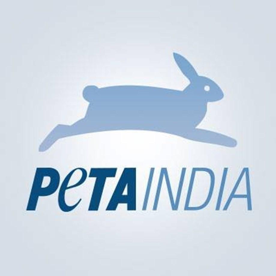 PETA not taking legal action against bull riding sport in US similar to jallikattu