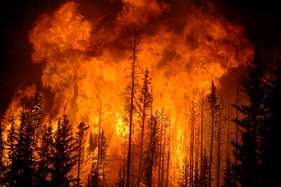UPDATE 2-Deadly 2017 wildfire found sparked by So. California Edison power lines