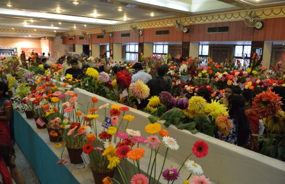 Ethiopia exhibits flowers, coffee at Beijing International Horticulture Expo 2019