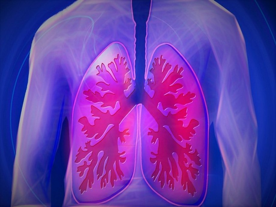 Science News Roundup: Virus can be transmitted via lung transplant; Blue Origin delays New Glenn rocket launch to 2022 and more - Devdiscourse