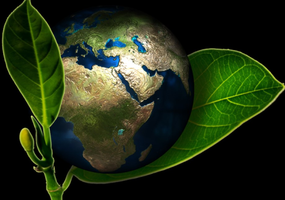 NZ to increase global climate finance commitment to NZD 300 mln