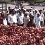 Onion price jumps 45 pc to Rs 80/kg in Delhi in just one week
