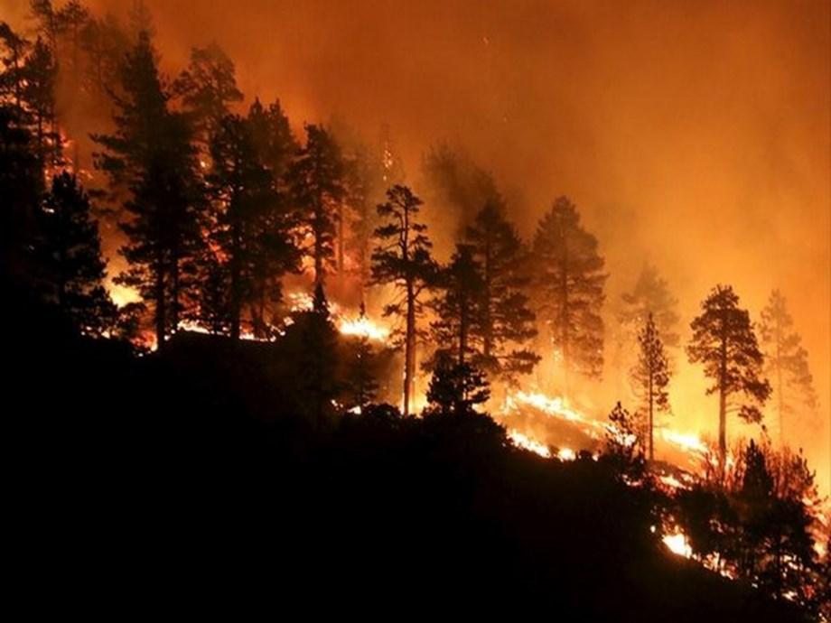 UPDATE 2-Australian authorities urge evacuations ahead of 'catastrophic' fire threat