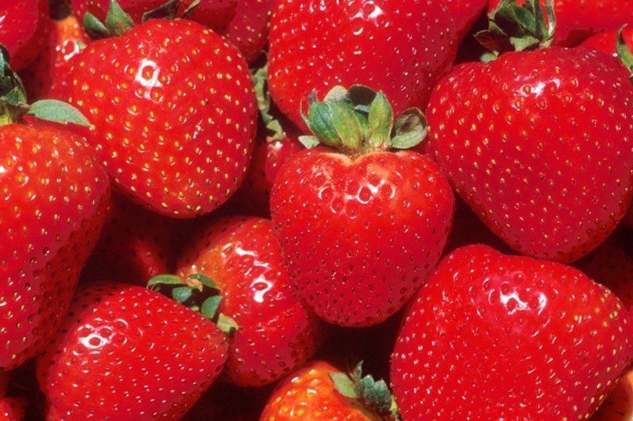 Second incident of strawberry contamination hits New Zealand
