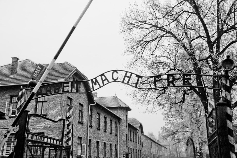 'Only eyes': Auschwitz liberator recalls death camp inmates 75 years on