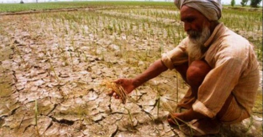 "Afghan drought: Without urgent help 10.6 mln people could be ""food insecure"" by 2019"