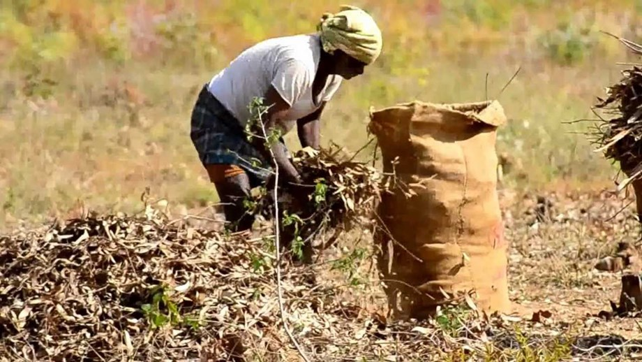 'Potato-seller' Congress MPs raise voice for problems faced by farmers