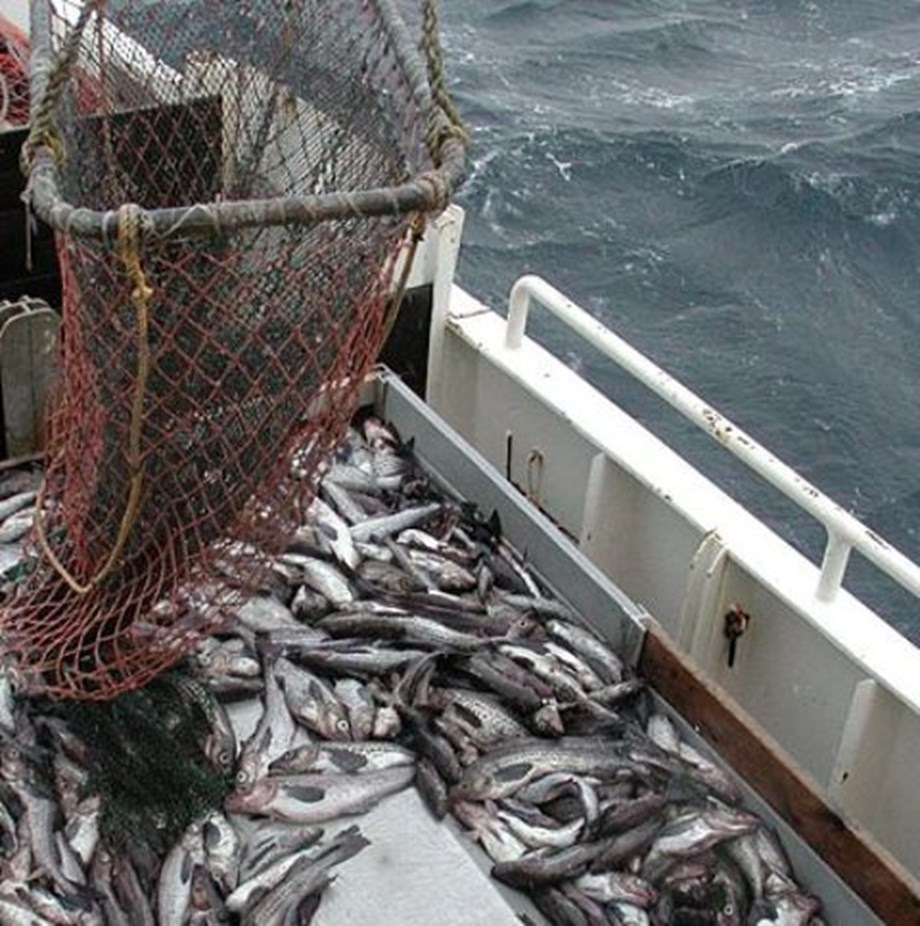 Minister Zokwana meets fishing industry leaders to discuss strategic fisheries matters