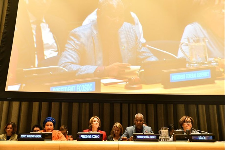 New panel set up to help make Sustainable Development Goals a reality