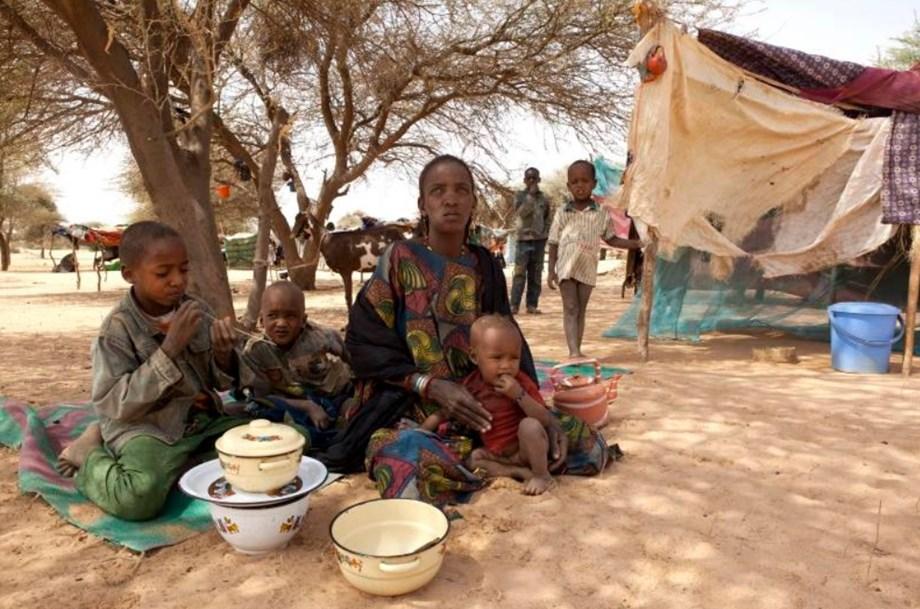 Peace accord still provides opportunities for progress in Mali: UN Mission head