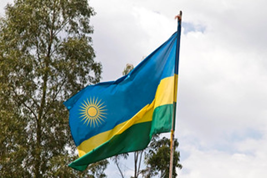 Rwandan security forces kill 19 'terrorists'
