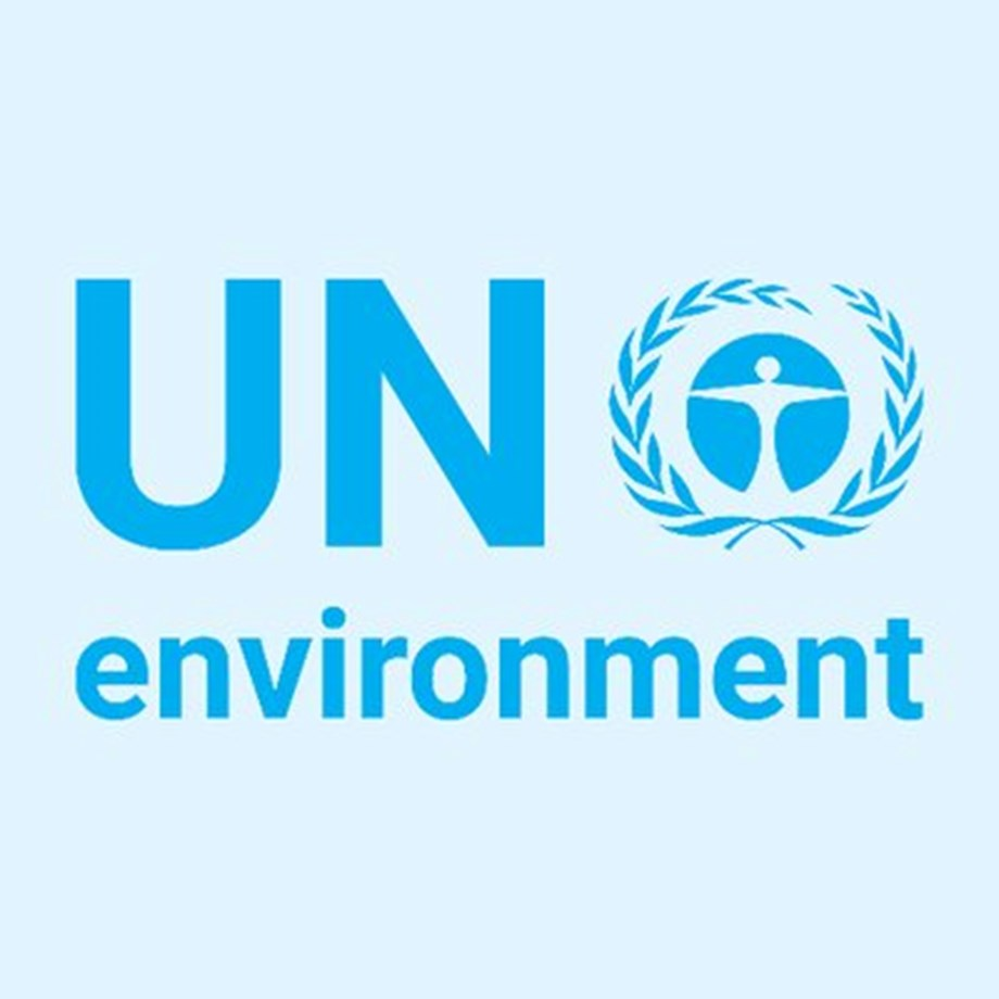 UNEP reports shows indoor pollution in India contribute from 22 to 52 pct