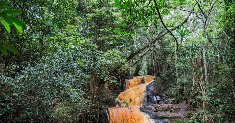 Amazon countries to seek deal on forest protection at Colombia summit