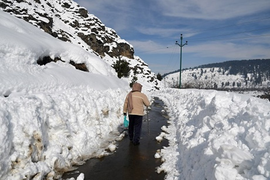 Himachal shivers in cold wave as higher reaches witness snowfall