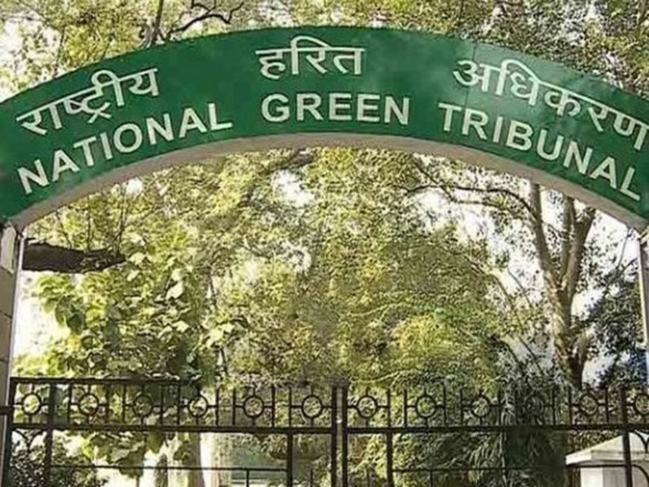 NGT asks Punjab, Haryana, UP about steps to tackle crop burning this year